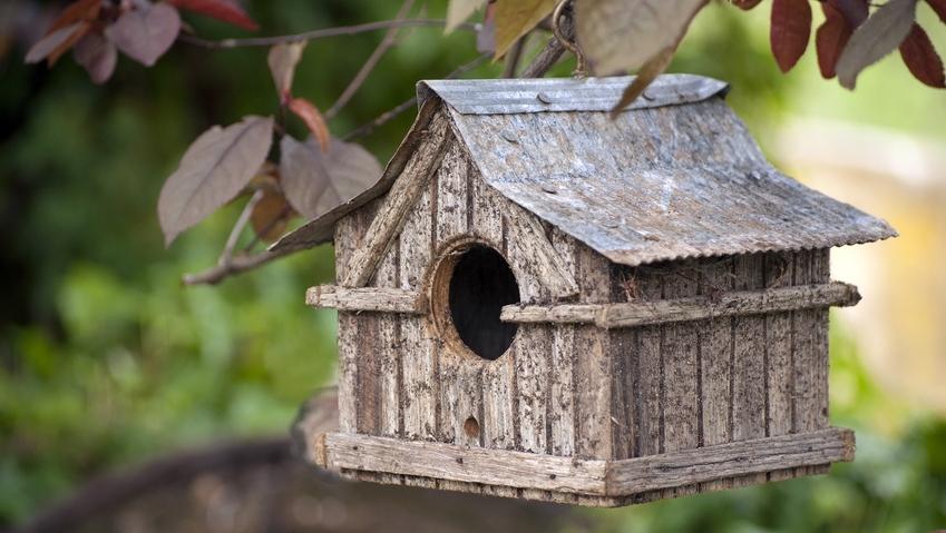 Resultado de imagen para Comment faire un habitat pour les oiseaux